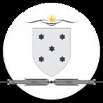 logo icono2